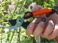 Garten Primus Damesaks 1