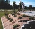 Plantemaatter2