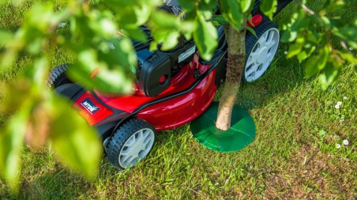 Treeguard4